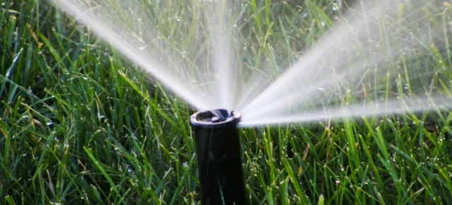 ON WEDNESDAY, the Westminster City Council approved making watering restrictions permanent (Flickr/Michael Mol).